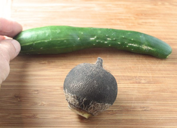 greenhouse cuke with Round Black Spanish radish