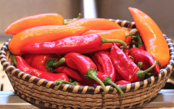 Sweet Happy Yummy and Dulce Rojo peppers