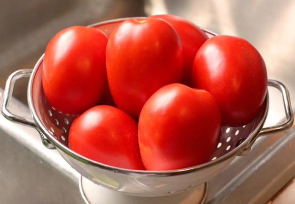 Quadro paste tomatoes