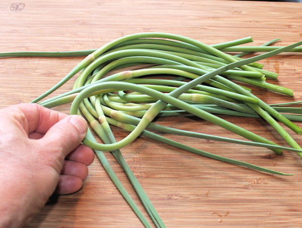 first batch of garlic scapes
