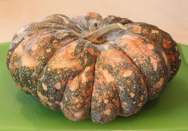 Thai Rai Kaw Tok winter squash