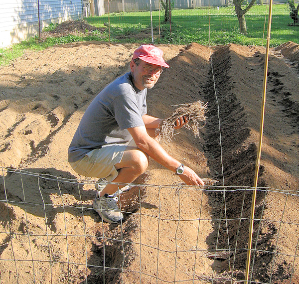 me planting asparagus in 2007