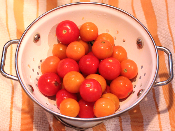 Sun Gold and Supersweet 100 tomatoes