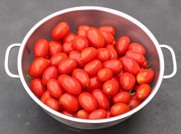 harvest of Juliet tomatoes