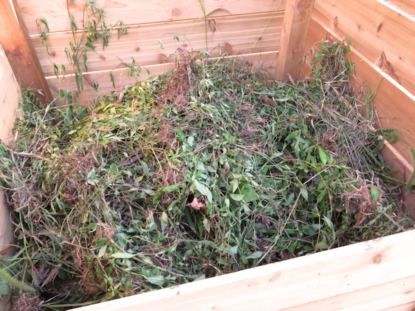 filling the new compost bins