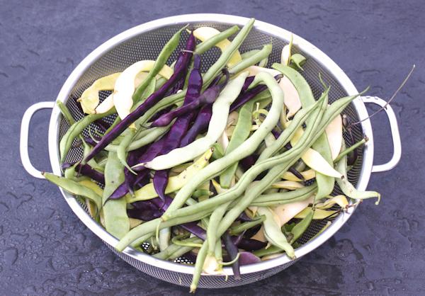 mixed pole beans