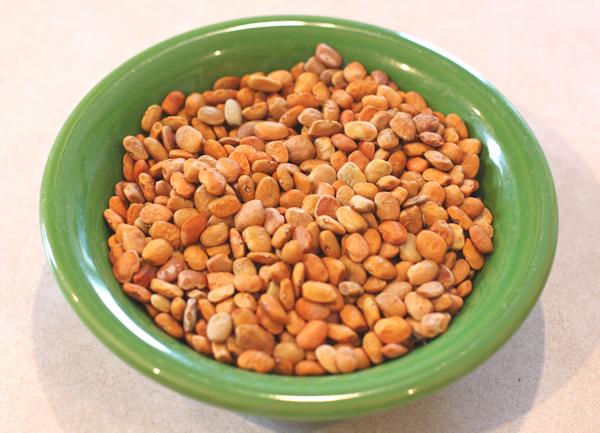 Sacaton Brown tepary beans