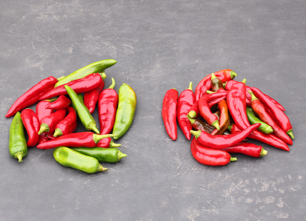 Biggie Chili(L) and Anaheim(R) peppers