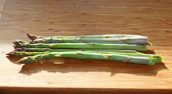 first asparagus harvest