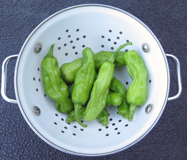 Italian Pepperoncini
