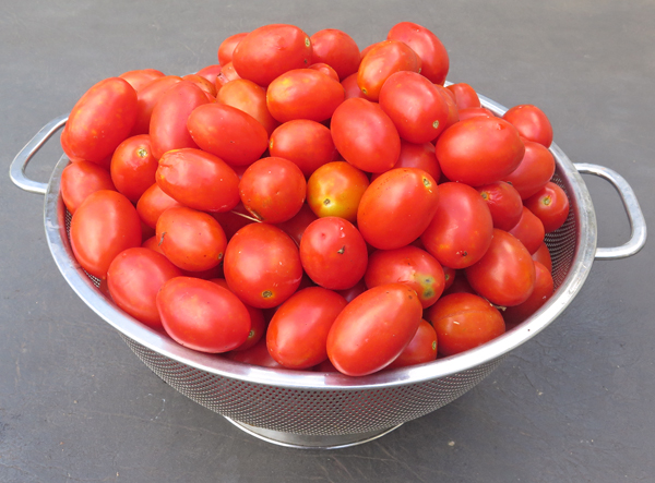 Juliet tomatoes