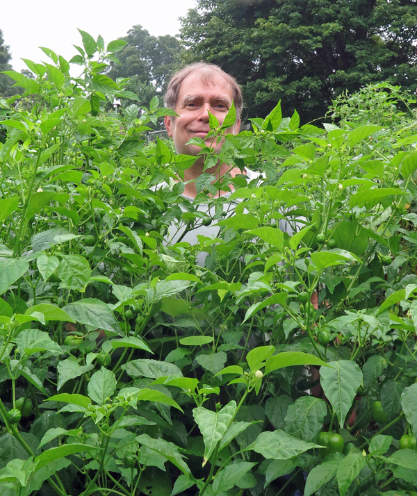 me hiding in the pepper patch