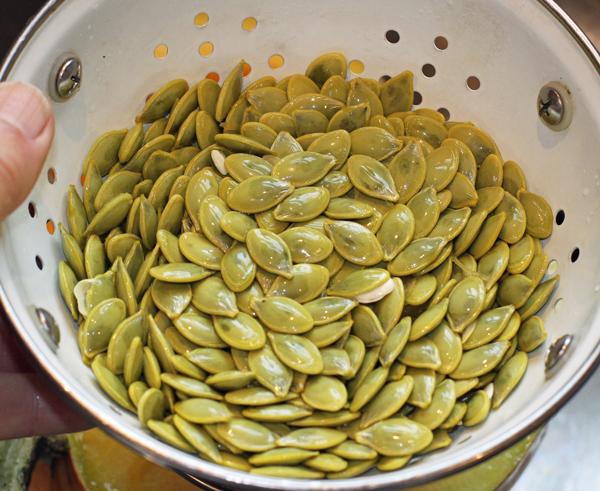seeds from Pepitas Pumpkin