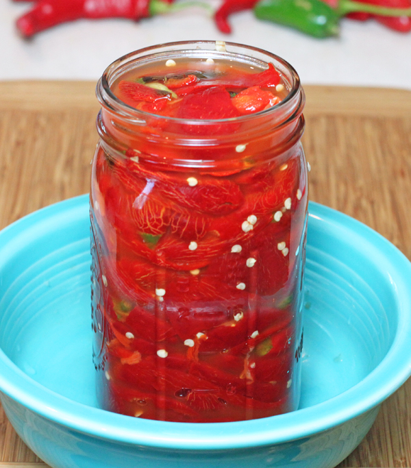 jalapeno peppers fermenting