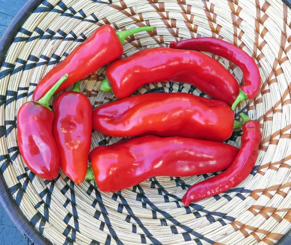 Corno di Toro Rosso, and Jimmy Nardello peppers