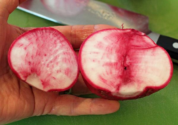 inside of Tsugaru Scarlet turnip