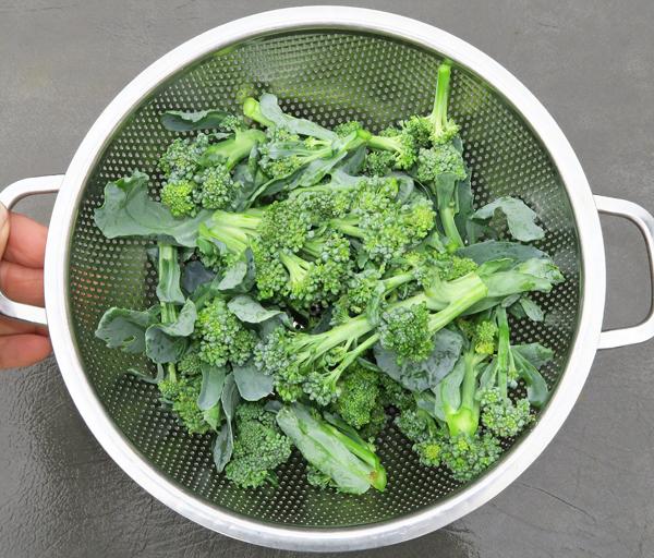 broccoli side shoots