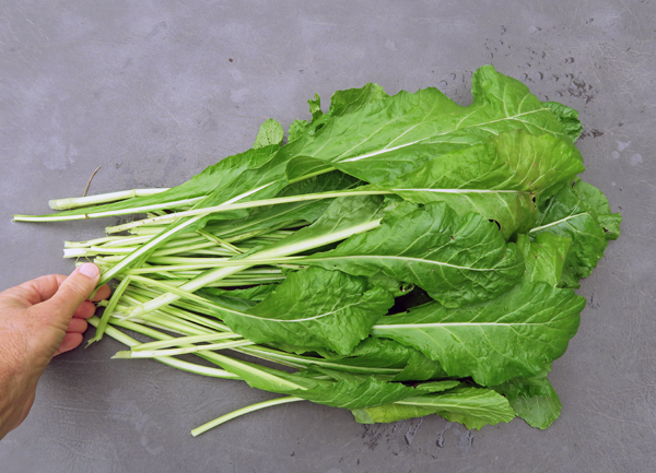 Nozawana Turnip greens