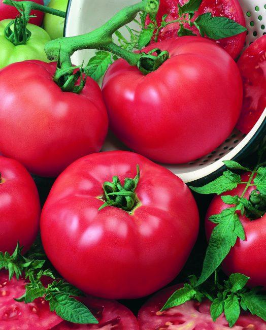 Tomato Chef