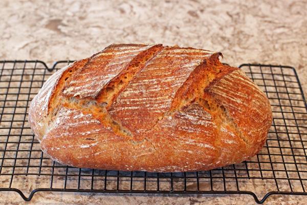Artisan Sourdough No-Knead Bread