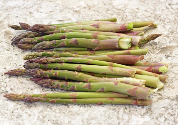 first big asparagus harvest of 2018
