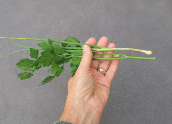 parsley and I'itoi onion