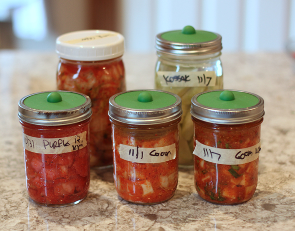 fermented fall veggies