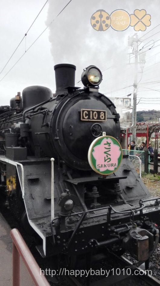 新金谷駅 機関車 撮影