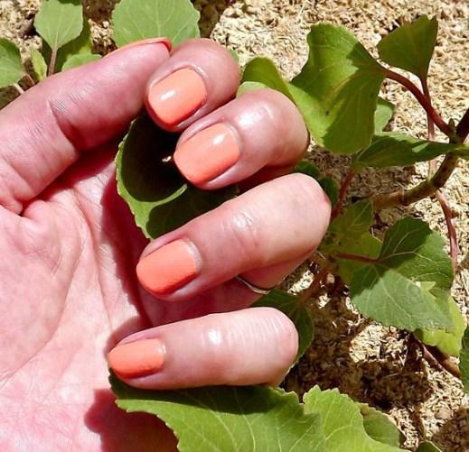 revlon apricot
