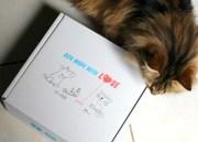 La première box de mon chat : la Wamiz Box