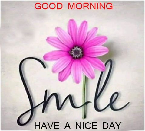 Good-morning-flower-with-smile
