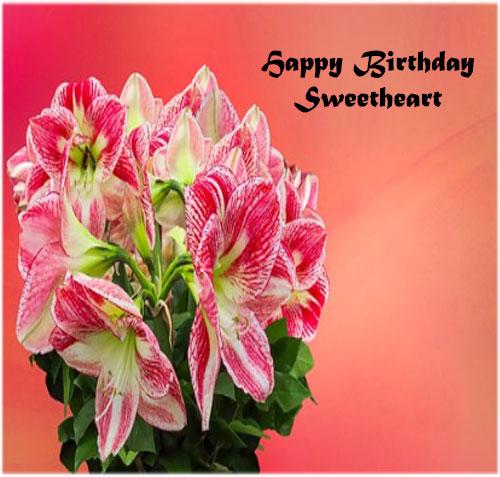 Birthday pics lover hd free download