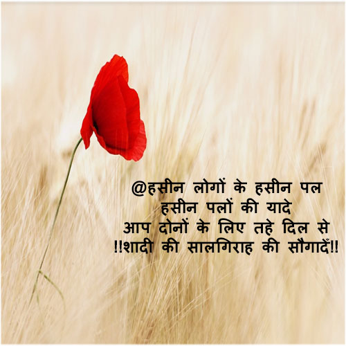 Marriage anniversary wishes in hindi Shayari for a couple