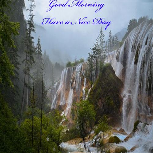 Whatsapp Good Morning Pics hd download