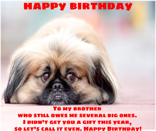 Funny happy birthday wishes images free hd download