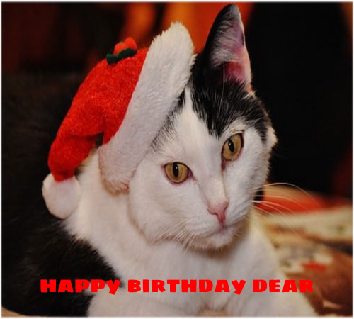Funny happy birthday images for facebook