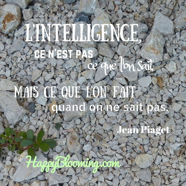 citation jean piaget intelligence vie