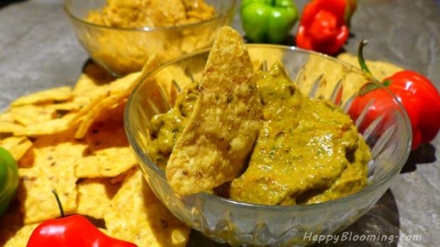 tartinade guacamole brunch apéro apéritif idées tacos dips dip sauce tremper