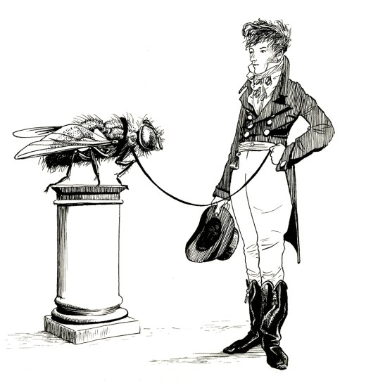Beau Brummel. Illustration from An Illustrated History of Domestic Arthropods. Ink on paper. 2017