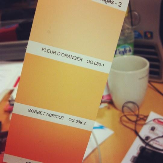 gamme peinture orange sorbet abricot fleur d'oranger