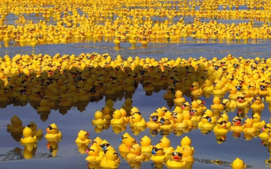 National Rubber Ducky Day – January 13, 2021