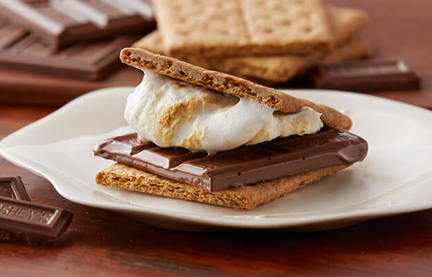 National S'mores Day - August 10