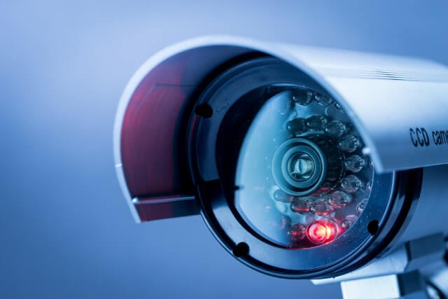 International Wave at the Surveillance Cameras Day