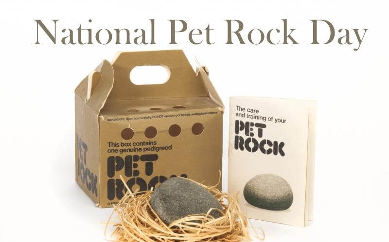 National Pet Rock Day – September 6, 2020
