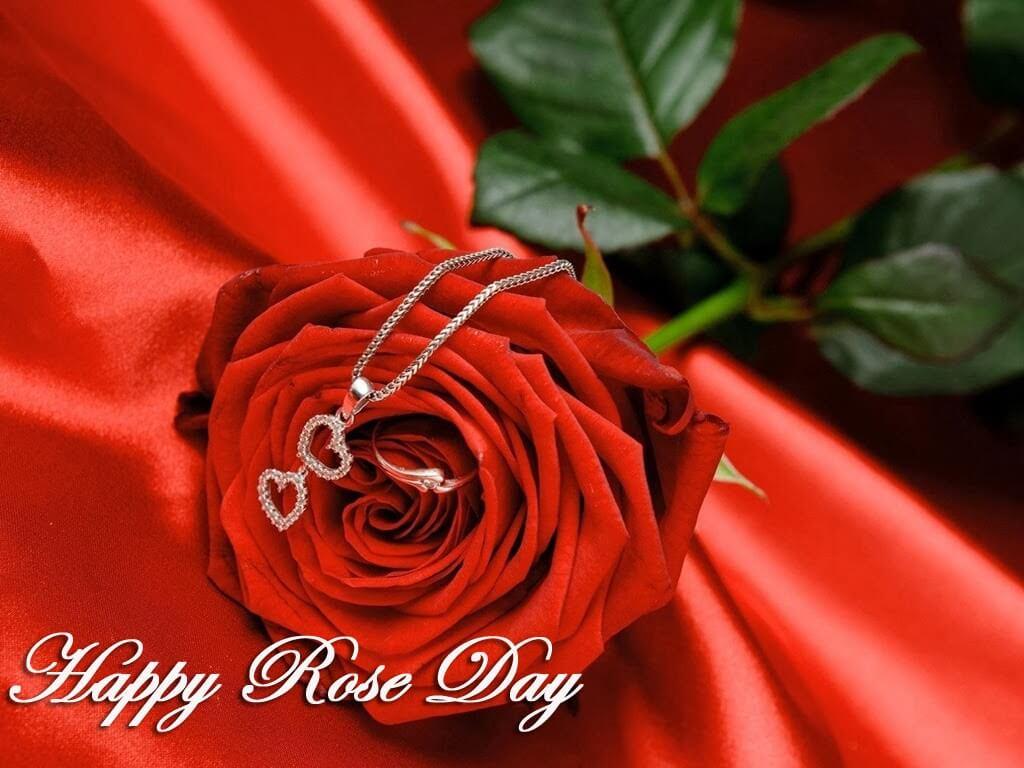 Happy Rose Day 2020