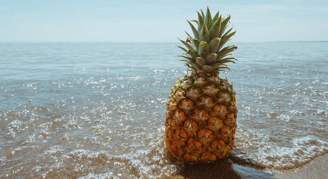 National Pineapple Day – June 27, 2020
