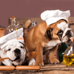 National Cook For Your Pets Day