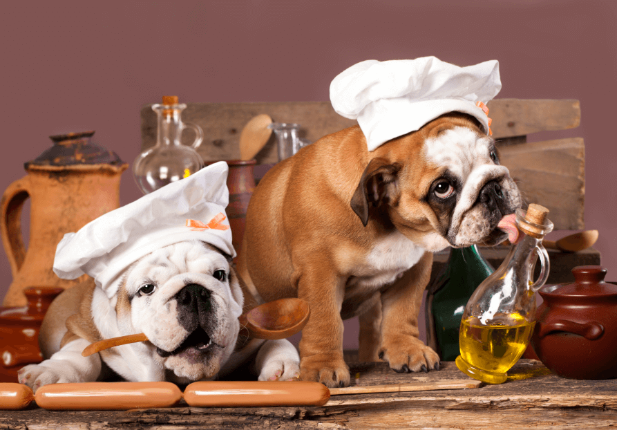 National Cook For Your Pets Day – November 1, 2020