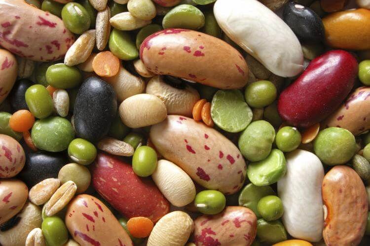 National Bean Day – January 6, 2021