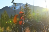 hunter-binocs-lens-flare-wayne-d-lewis-dsc_0226